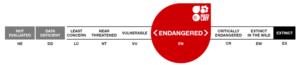9 categorías lista roja UICN. Fuente UICN