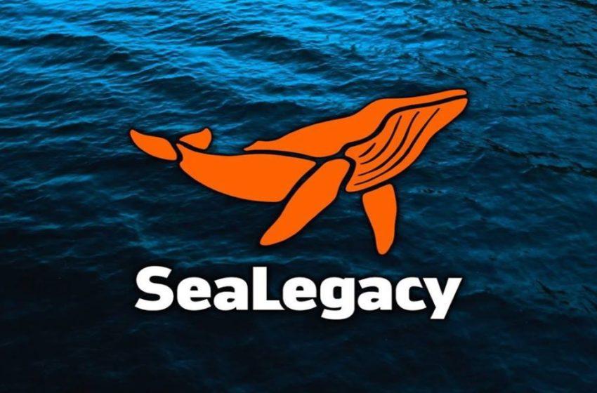 SeaLegacy: Storytellers por el medio ambiente