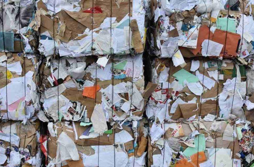 Bioindustria de la economía circular