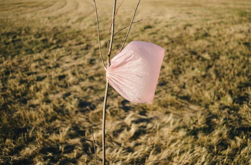 Historia de una bolsa de plástico de un sólo uso