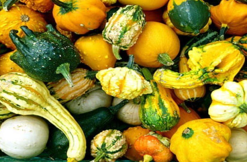 Frutas y verduras feas ¿a la basura?