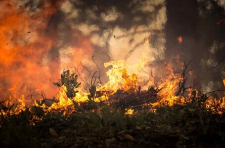 Los incendios envenenan el aire