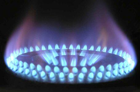 Gas butano para salvar bosques