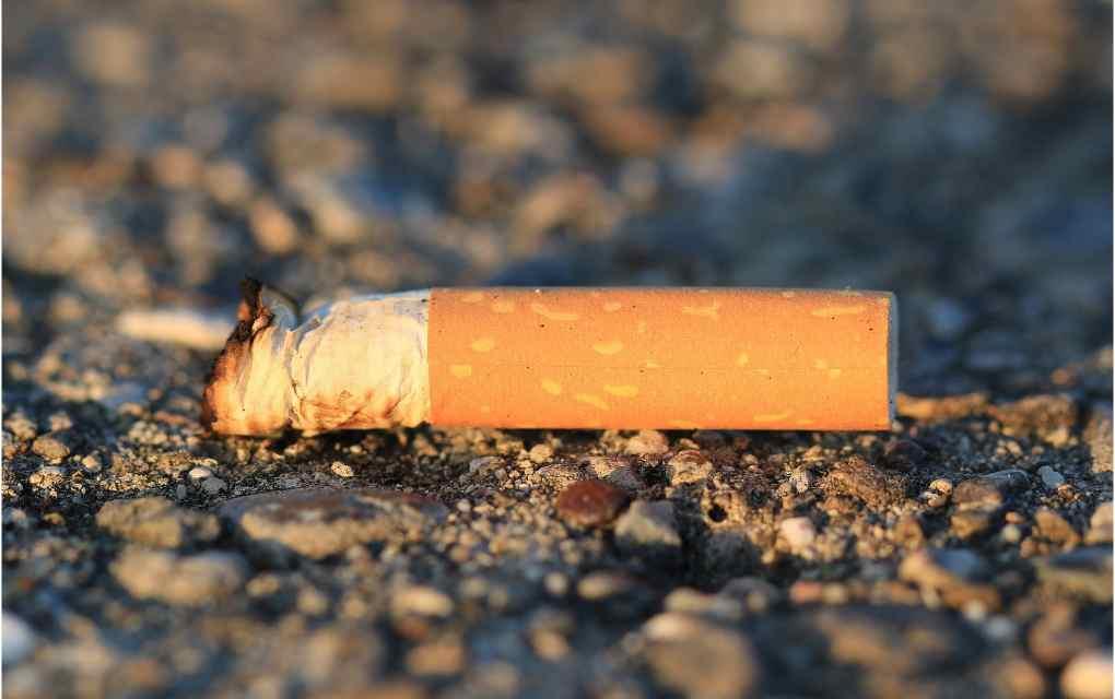 Ladrillos cigarro