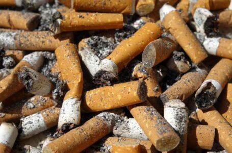 Ladrillos con colillas de cigarrillo