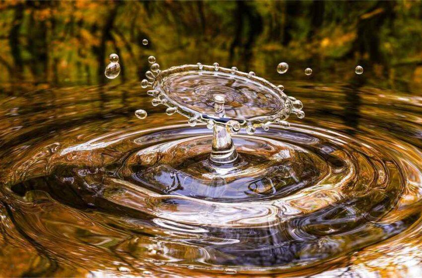 Agua reciclada para cultivar