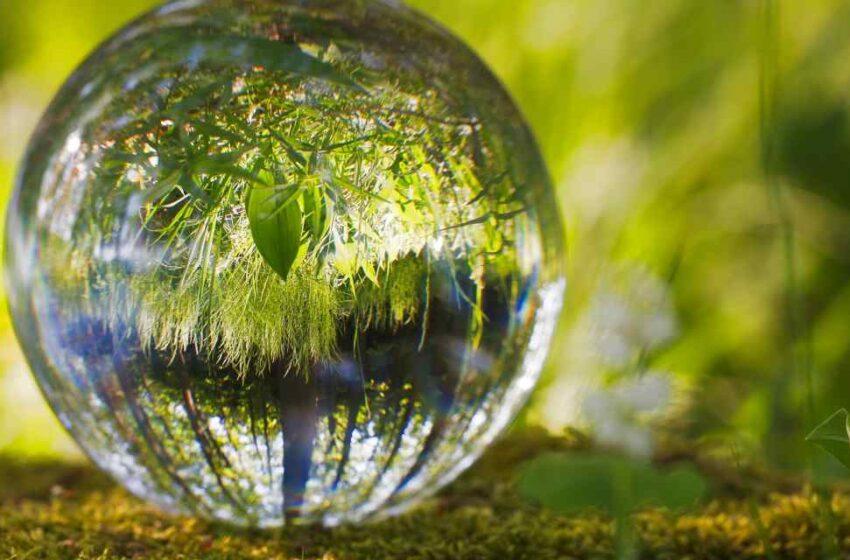 Recuperación sostenible para el planeta