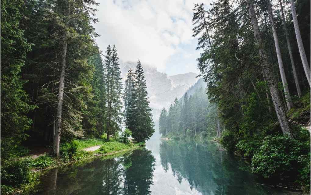 Ecosistemas de agua dulce