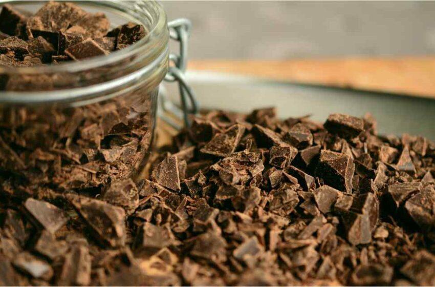 Chocolates y deforestación global